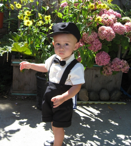 78d199ff4 DapperLads - Boys Ring Bearer Shorts Set - Black - Toddler 2T - 4T ...