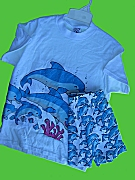 Dolphin Tee and Matching Shorts Set